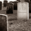 SELLING IS DEAD: Moving Beyond Traditional Roles and Practices to Revitalise Growth