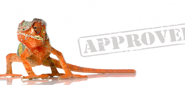Procurement – The Organizational Chameleon